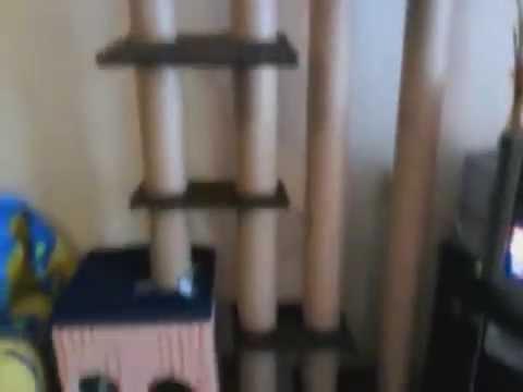 Интернет магазин бауцентр предлагает недорого купить детский прорезиненный ковролин, ковровые покрытия и паласы с доставкой на дом. Низкие цены в каталоге напольных покрытий.