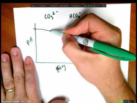 How To Determine The Concentration Of Carbonate And Bicarbonate In A Titration Mixture