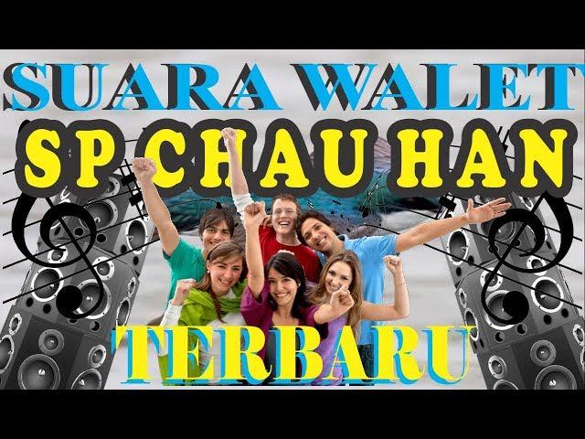 SUARA WALET SP CHAUHAN TERBARU