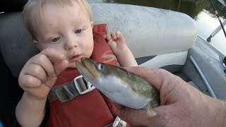 Catching eels & carp with my 1 year old