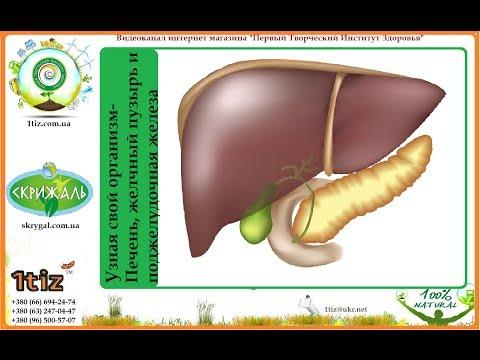 Гепатопротекторы Лечение цирроза печени, интоксикаций