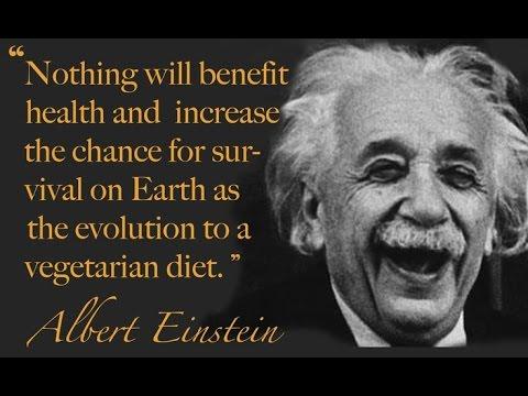 MLK Day Famous SMART Vegetarians HISTORY Quotes Einstein Gandhi Darwin Dr Civil Rights Slavery
