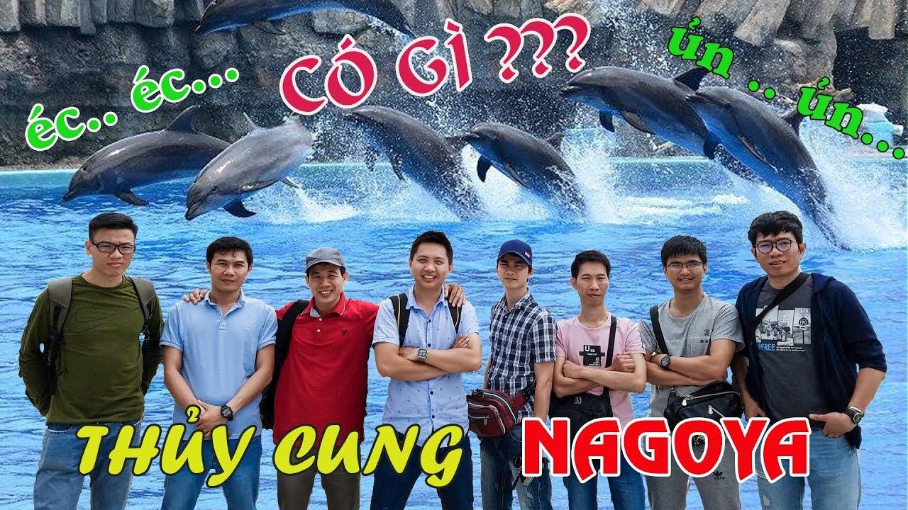 Cuộc sống Nhật Bản #6. Thủy cung Nagoya có gì ?