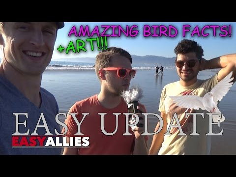 AMAZING BIRD FACTS! (THANKSGIVING SPECIAL SORT OF) - EASY UP