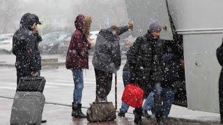 Аэропорт Ростова-на-Дону утром после катастрофы Боинга