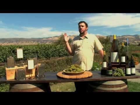 GlobeTrotter Jon Haggins TV in San Luis Obispo, California Pt2