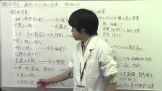 【日本史】安土桃山1   織田信長、鉄砲・キリスト教の伝来