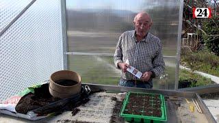 Comment réaliser ses semis comme un pro?