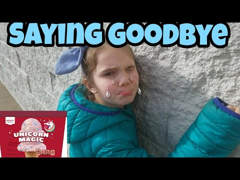 Last Time Going To Toys R Us! Emotional Vlog | Hunt For Unicorn Magic Ice Cream #savetoysrus