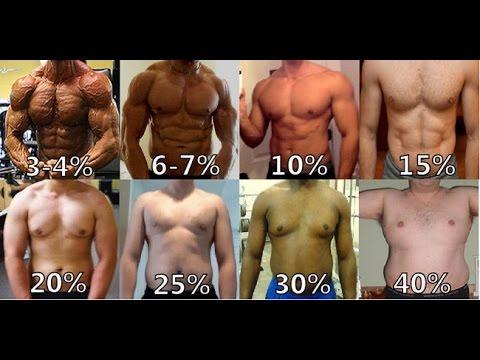 Prozent Körperfett