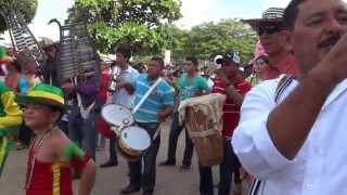 37 Festival Nacional del Porro en San Pelayo 2013  Desfile de Aguadoritas