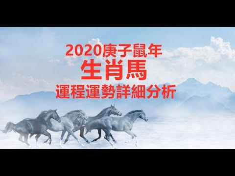 【12生肖2020年运势运程】生肖属马的人2020年运程详解 易学洪辛老师