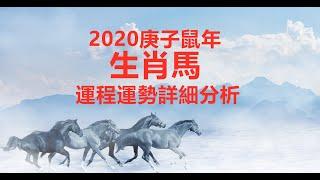 【12生肖2020年運勢運程】2020庚子鼠年十二生肖屬馬的人流年運程預測詳解