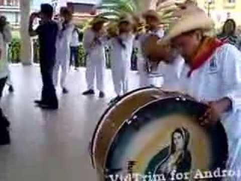 Banda La Guadalupana de Huazalinguillo Huautla. Hgo.