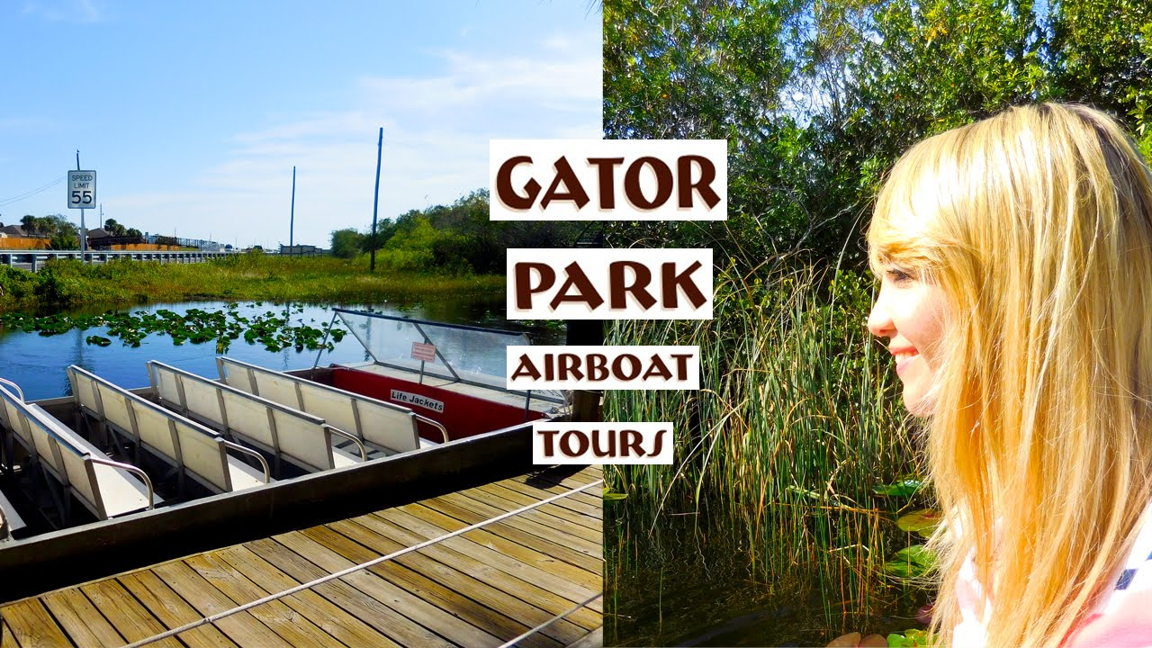 Travel Vlog Gator Park Airboat Ride Near Miami Fl In Everglades