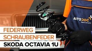Montage SEAT CORDOBA (6K1, 6K2) Bremszange: kostenloses Video