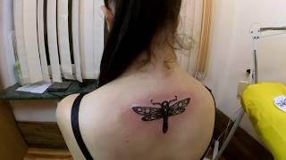 Новый Татуировщик Дмитрий