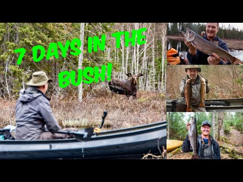 7 Days In The Bush Survival Fishing Adventure In The Wilderness