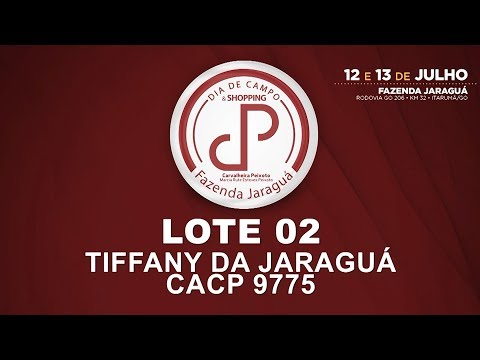 LOTE 02 (CACP 9775)