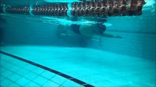 Total Immersion freestyle AJ Kim (Korean) stroke bilateral breathing