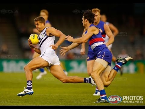 AFL 2014 Round 11 Fremantle Dockers v Western Bulldogs Q2