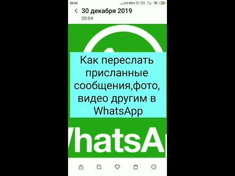 Как переслать присланные сообщения,фото, видео другим в WhatsApp(Ватсапп)