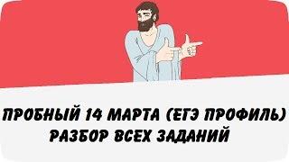 Пробный ЕГЭ 14 марта (Разбор всех заданий варианта) ЕГЭ профиль по математике (ШКОЛА ПИФАГОРА)