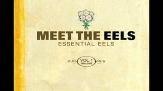 Eels - Saturday Morning