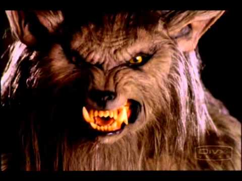 Werewolf - Music & videos