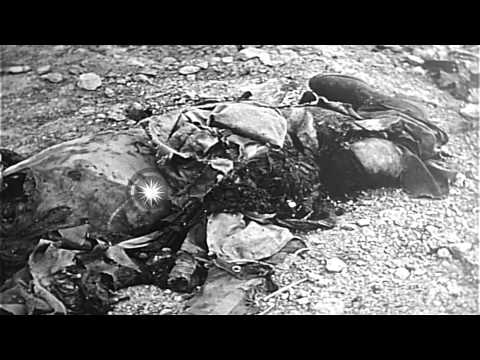 Wrecked US Marine tank, dead and injured Marines during combat operation on Japan...HD Stock Footage