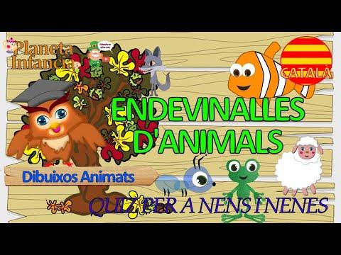 ENDEVINALLES D'ANIMALS Videos Infantils en Català - YouTube