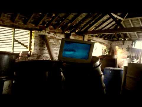 Andrew Johnson Music Video