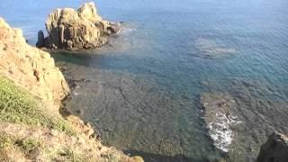 Un Mare di Auguri Antonella :)