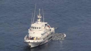 Costa Concordia - recovering victims