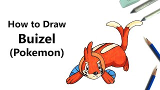 How to Draw Buizel from Pokemon [Speed Drawing]
