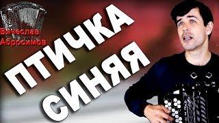 ПТИЧКА СИНЯЯ под баян - поет Вячеслав Абросимов
