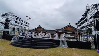 영천한약 축제