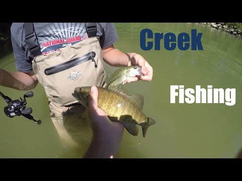 They're In The Creeks! - Ohio Smallmouth Fishing