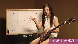 この映像は教則DVD『ゼッタイ泣ける!泣きのブルース・ロック・ギター超...