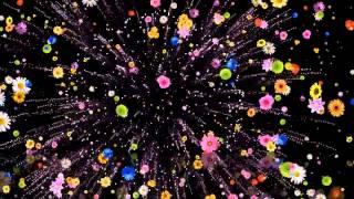 Футаж Цветочный салют HD(Footage best Футажи для видеомонтажа,большая коллекция различная тематика все можно скачать бесплатно. Находка..., 2015-07-29T14:13:02.000Z)