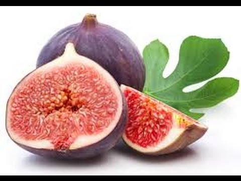 أنفوغراف فوائد التين الصحية للأطفال Fruit Benefits Alternative Medicine Health