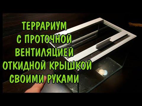 Вопрос: Как сделать террариум для пресмыкающихся?