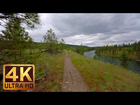 4K Virtual Hike with Calming Music | Walking in the Woods (3 hours video) - Part 4