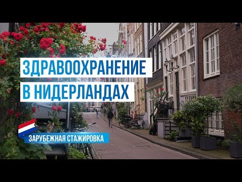 Здравоохранение в Нидерландах. Стажировка Министерства здравоохранения Московской области