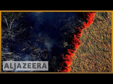 amazon-burning:-brazil-reports-record-surge-in-forest-fires