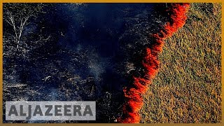 Amazon burning: Brazil reports record surge in forest fires