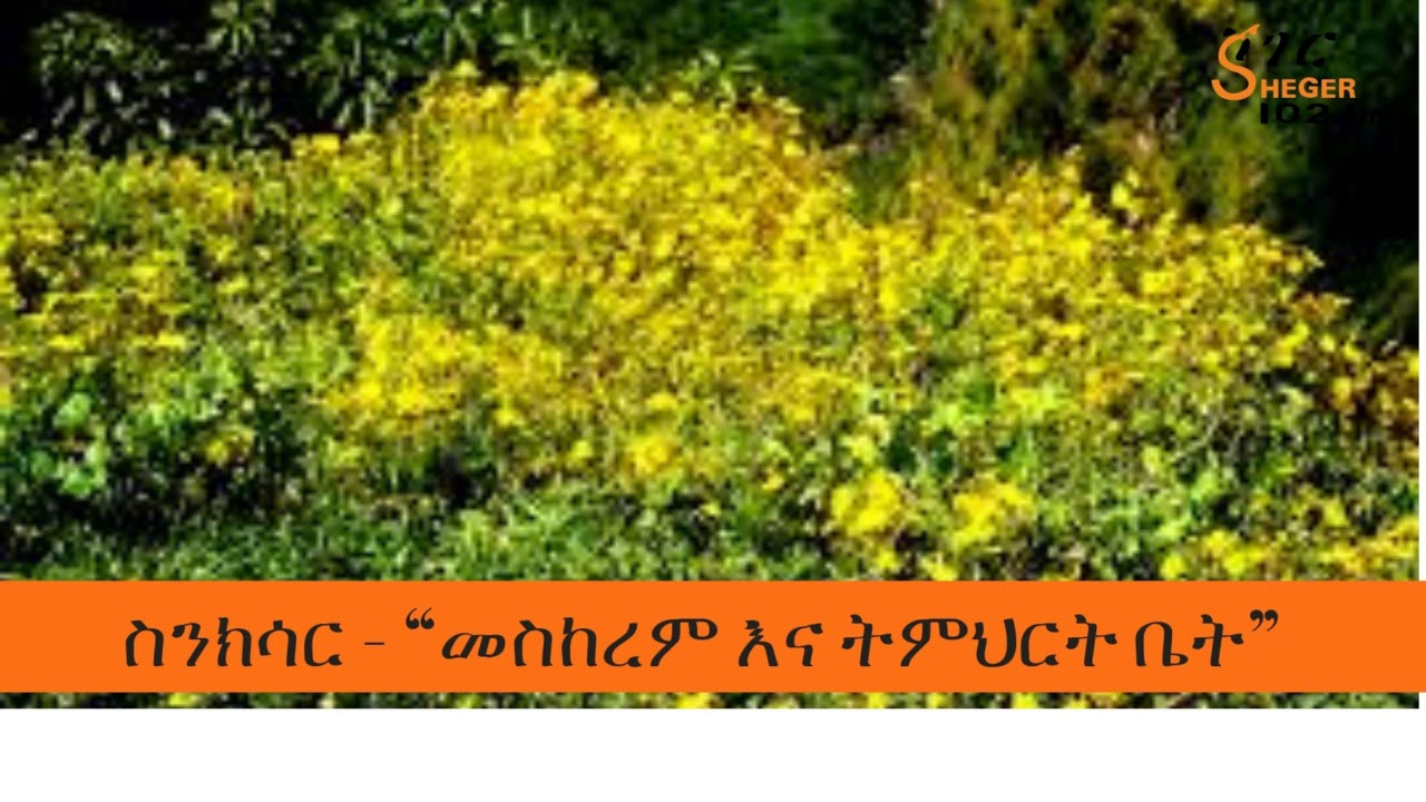 Sheger FM 102.1: Meskerem and School Beginning - መስከረም እና ትምህርት ቤት