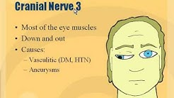 hqdefault - Diabetic Third Nerve Palsy Pupil