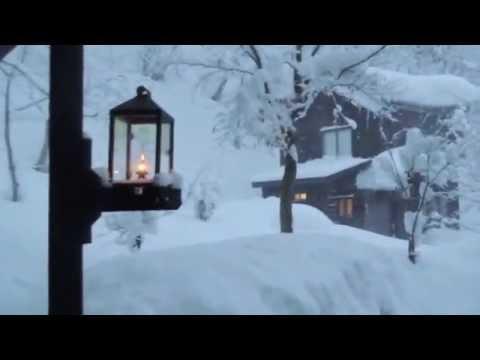 日本の冬を秘湯で過ごす訪日外国人!