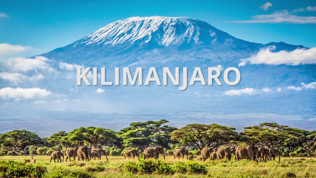 Mt Kilimanjaro Summit Day Youtube